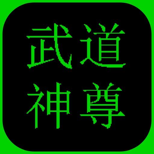 武道神尊苹果版
