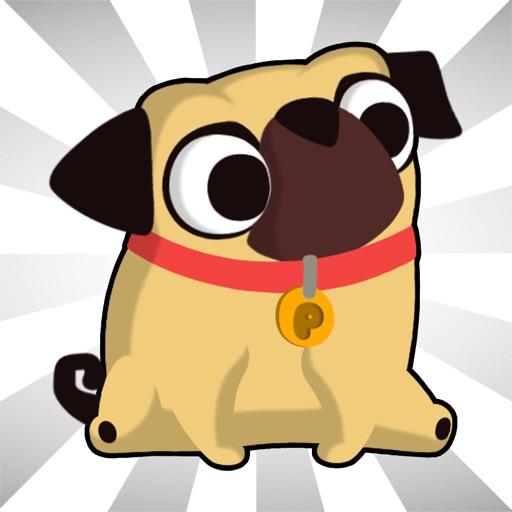 amazeing Pug