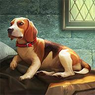 露西的狗2