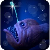 灯笼鱼饲养