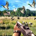 野鸭狩猎挑战