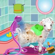 小绵羊宠物日托