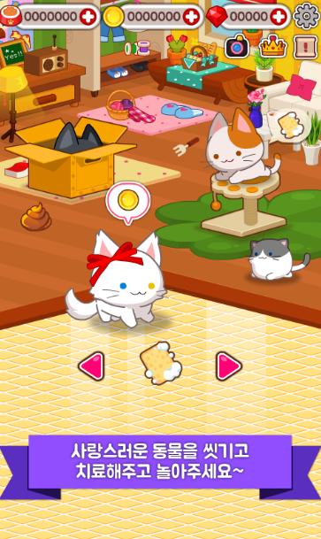 迷你宠物小猫
